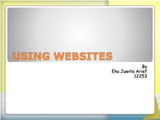 USING WEBSITES