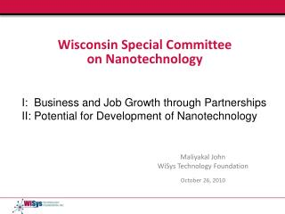 Wisconsin Special Committee  on Nanotechnology