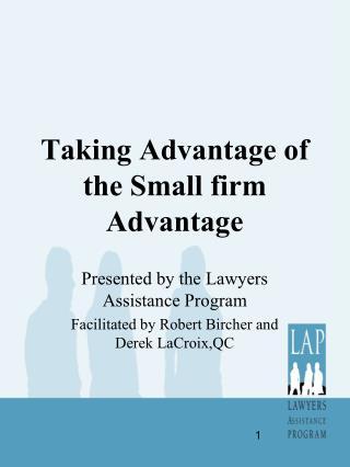 Taking Advantage of the Small firm Advantage