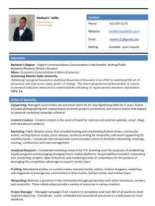 Michael C. Willis Multimedia Writer Business Strategist