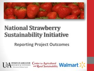 National Strawberry Sustainability Initiative