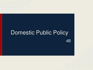 Domestic Public Policy