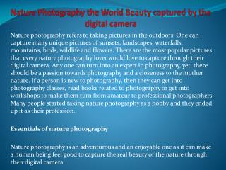 Nature Photography the World Beauty captured by the digital