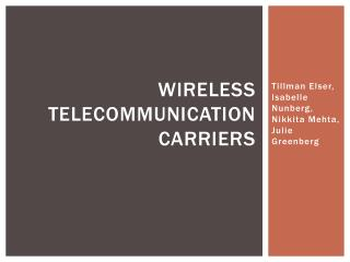 Wireless Telecommunication Carriers