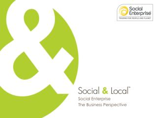 Social Enterprise The Business Perspective