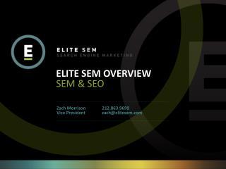 ELITE SEM OVERVIEW SEM & SEO