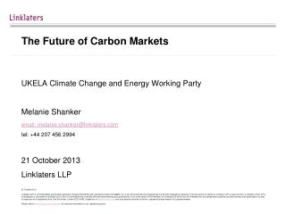 The Future of Carbon Markets