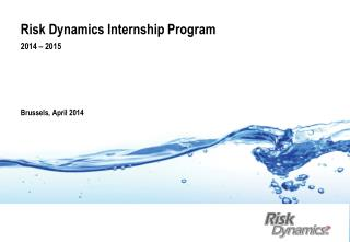 Risk Dynamics Internship Program