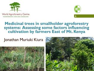 Medicinal trees in smallholder  agroforestry  systems:  Assessing some factors influencing cultivation by farmers East