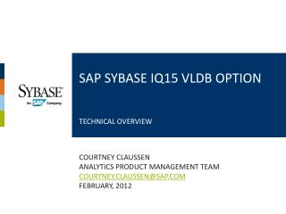 SAP SYBASE IQ15 VLDB OPTION