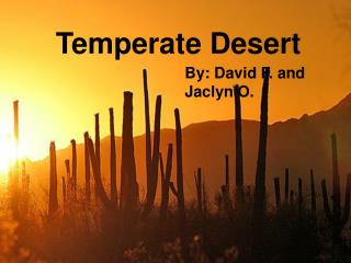 temperate desert