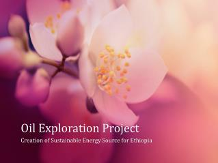 Oil Exploration Project