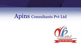 Apins Consultants  Pvt  Ltd