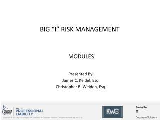 BIG �I� RISK MANAGEMENT