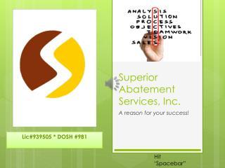 Superior Abatement Services, Inc.