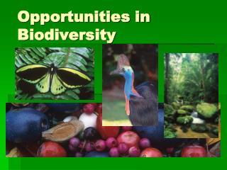 Opportunities in Biodiversity