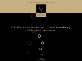 from the parcels delimitation to the wine marketing: an integrated organization