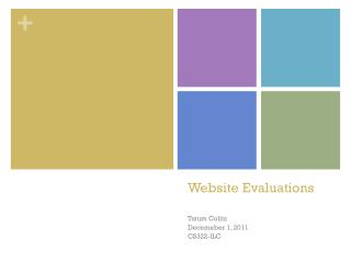 Website Evaluations