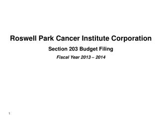 Roswell Park Cancer Institute Corporation Section 203 Budget Filing Fiscal Year  2013 – 2014