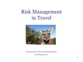 R isk Management  in Travel