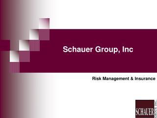Schauer Group, Inc