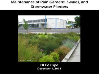 Maintenance of Rain Gardens, Swales, and  Stormwater  Planters