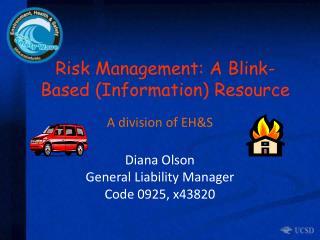 Risk Management: A Blink-Based (Information) Resource