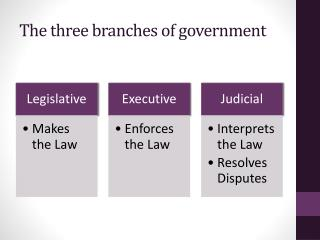 The three  b ranches of government