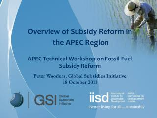 Overview of Subsidy Reform in  the APEC Region APEC Technical Workshop on Fossil-Fuel Subsidy Reform