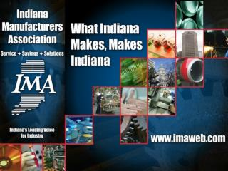 What is the IMA?
