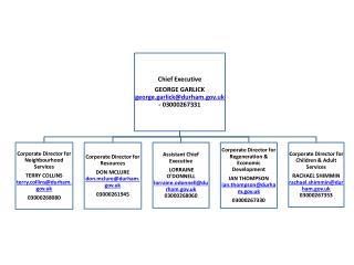 31662677 Senior Managment Structure