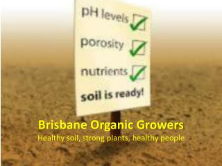 Brisbane Organic Growers Healthy soil, strong plants, healthy people