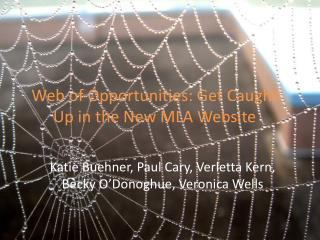 Web of Opportunities: Get Caught Up in the New MLA Website