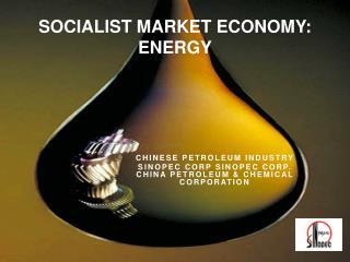 SOCIALIST MARKET ECONOMY: ENERGY