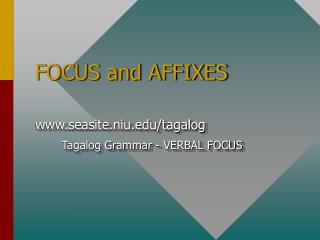 FOCUS and AFFIXES
