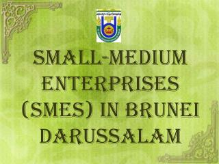 Small-Medium Enterprises (SMEs) in Brunei Darussalam