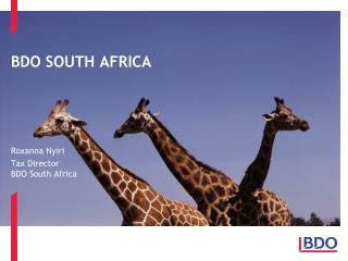 BDO SOUTH AFRICA