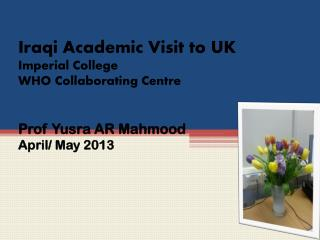 Iraqi Academic Visit to UK Imperial College  WHO Collaborating Centre  Prof  Yusra  AR  Mahmood April/ May 2013