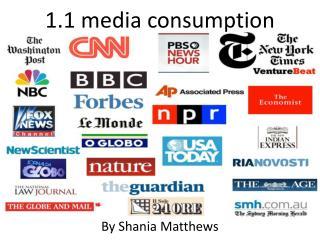 1.1 media  consumption