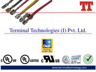 Terminal Technologies ( I ) Pvt. Ltd .