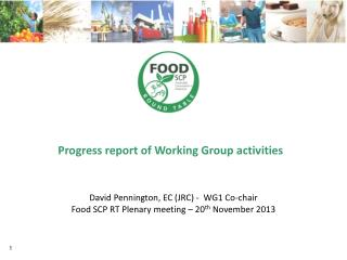 Progress report of Working Group activities