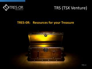 TRS-V