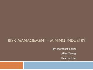 Risk Management - Mining Industry