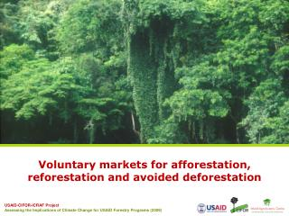 Voluntary markets for  afforestation , reforestation and avoided deforestation