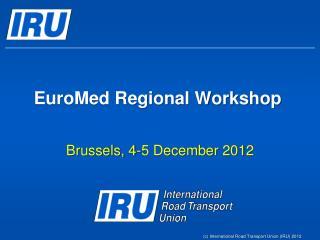 EuroMed Regional Workshop