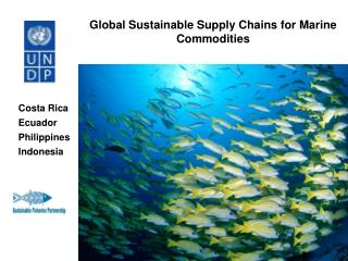 Global Sustainable Supply Chains for Marine Commodities