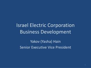 Israel Electric Corporation Business Development