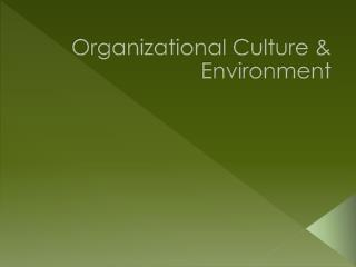 Organizational Culture & Environment