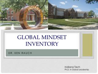 Global Mindset Inventory  .