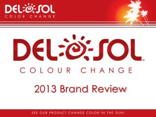 2013 Brand Review